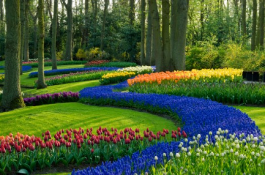 Five Simple Landscaping Tips that Improve Home Value ... on Basic Landscaping  id=33830